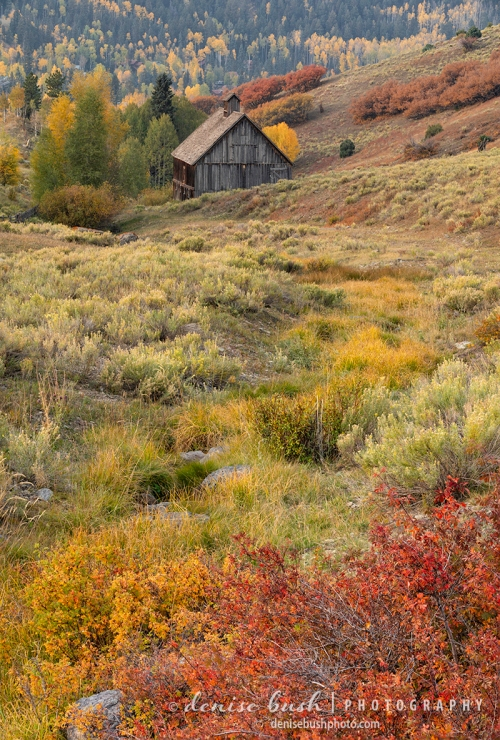 A picture perfect barn and autumn colors make a wonderful rural scene.