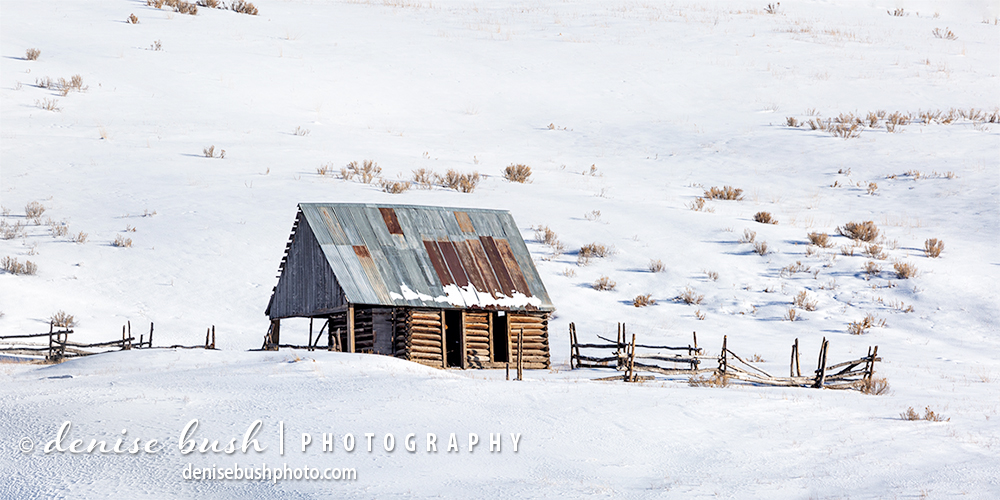 An old log cabin, weathered by the elements reminds us of a day gone by.