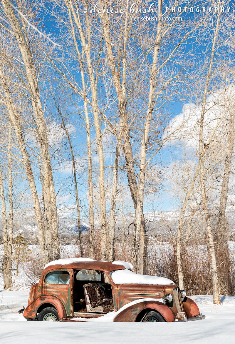 An old rusty car from the past isn't going anywhere soon, content to sit in the sun and snow.
