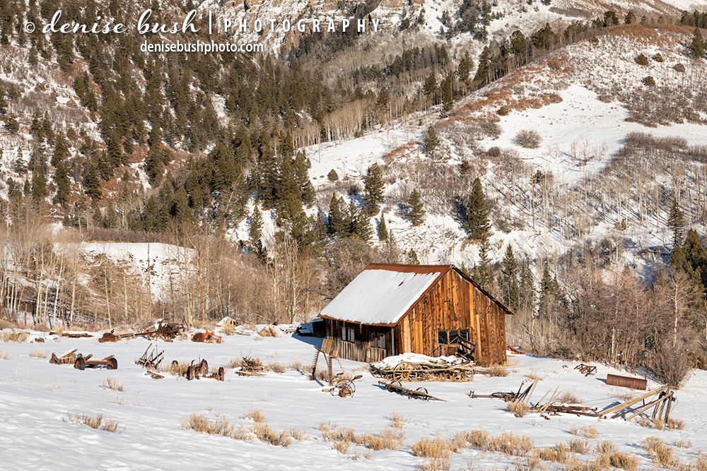 A weathered shack, surrounded by farm equipment makes a fun subject in the snow.