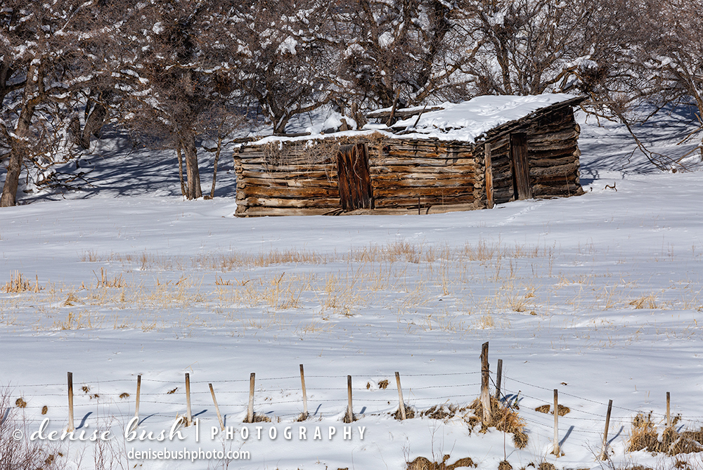 An old cabin located on a Colorado ranch soaks up some warm winter sun.