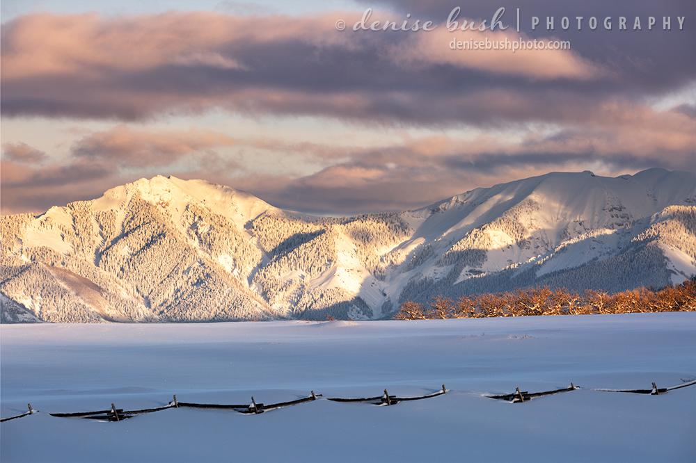 A fresh coating of snow coats a mountain in Ouray County, Colorado.