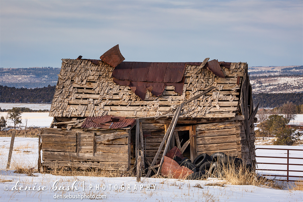 What this shed was used for in the past is unknown. Now it has become a place to pile used tires.