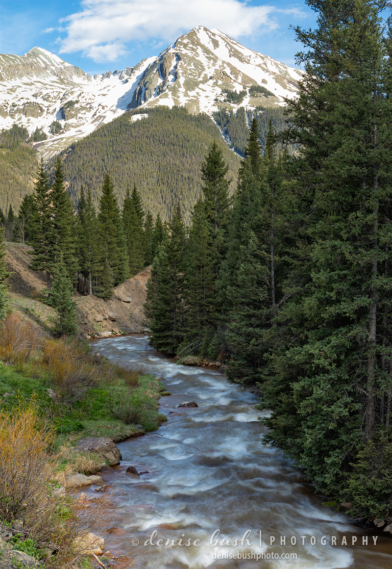 A spring stream flows from the mountains near Silverton, Colorado. Kendall Mountain is featured in the distance.