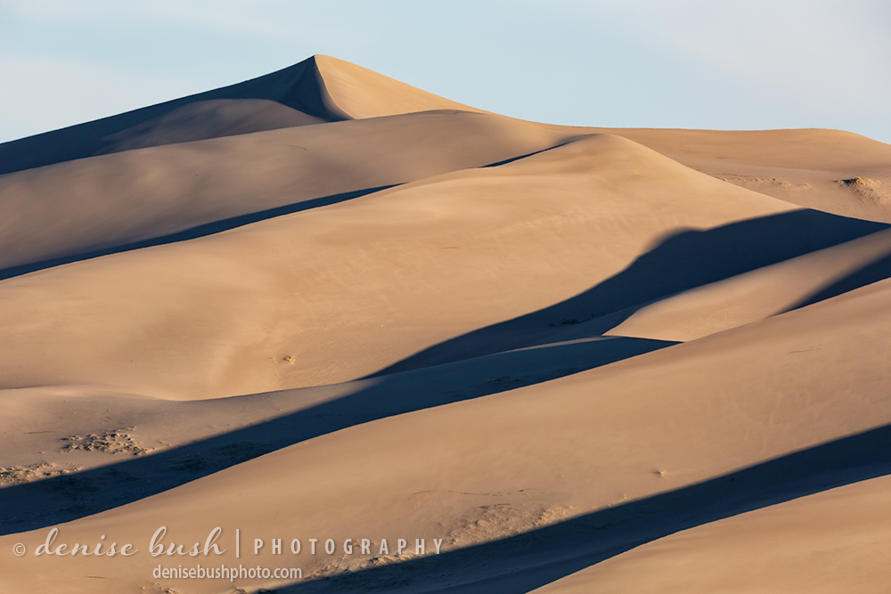 A close look at the dunes at The Great Sand Dunes National Park reduces the scene to curves, shapes and shadows,