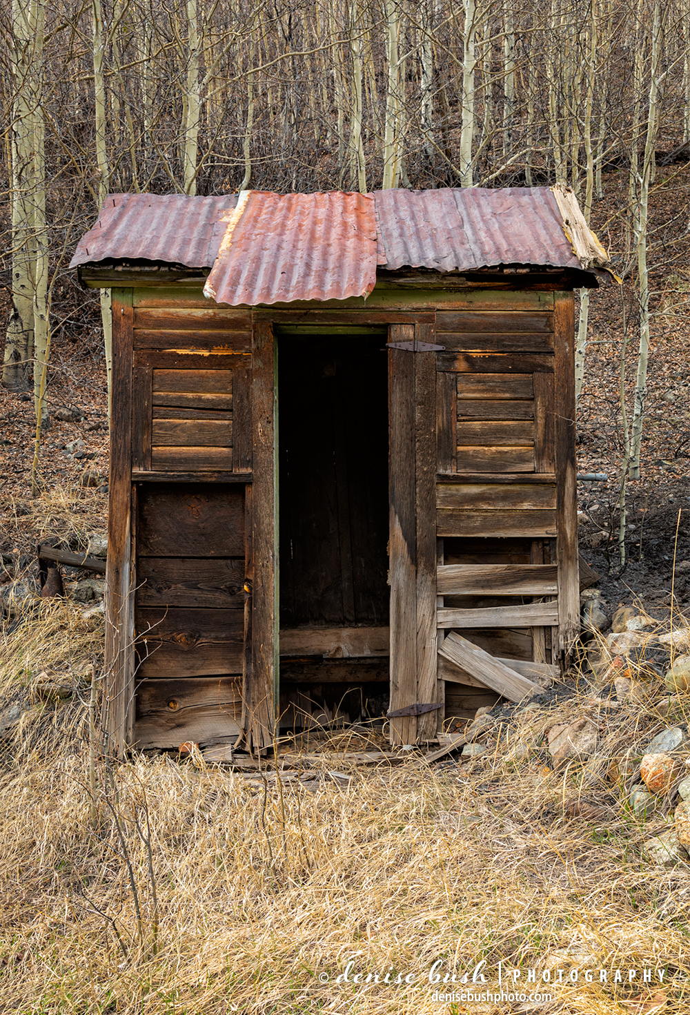 Weathered wood and a rusty tin roof make this outhouse, built for two a nostalgic find.