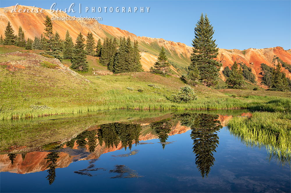 A still pond creates a beutiful scene reflecting the blue sky and red mountain ridge high in the Colorado Mountains.