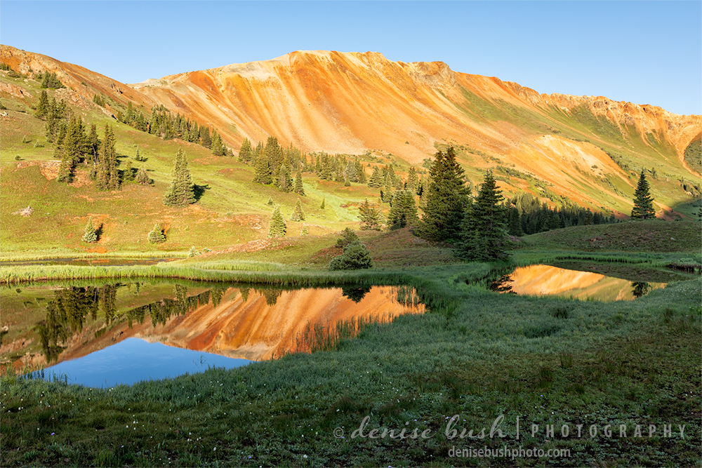 A beautiful blue sky and red mountain make perfect subjects for reflections in the ponds below.