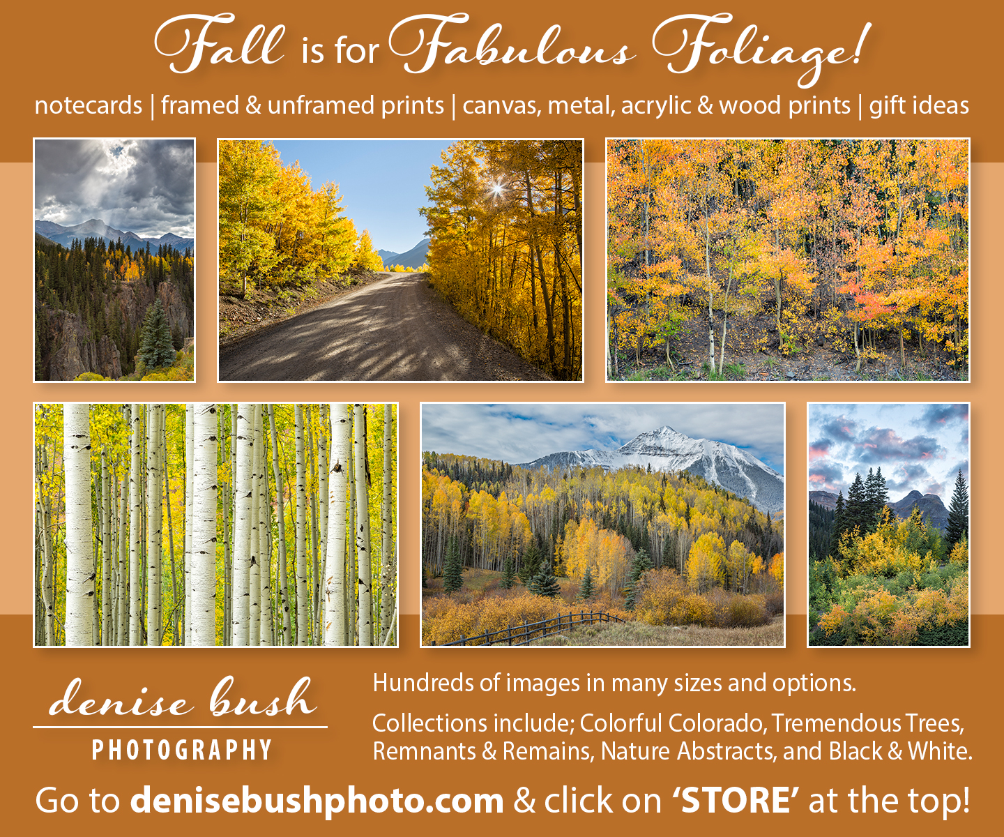 Fine Art Photographic prints, framed, unframed, metal, acrylic, canvas and more ... any size!