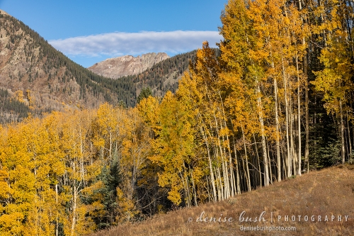 Early morning light and a long pinkish cloud create a pretty autumn scene in the San Juan Mountains of Colorado.