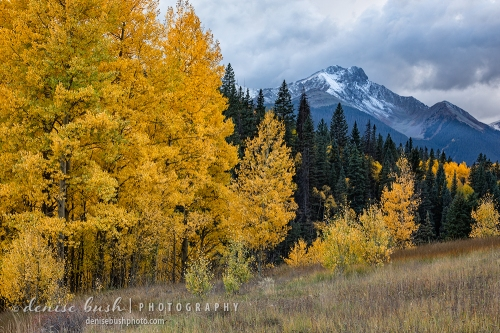 Nothing beats scenic beauty like snow on the peaks in autumn!